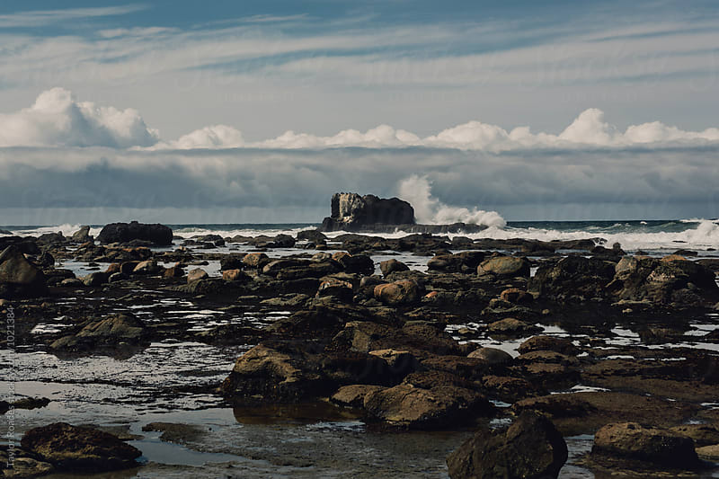 West Coast Landscape rocky beach by Taylor Roades for Stocksy United