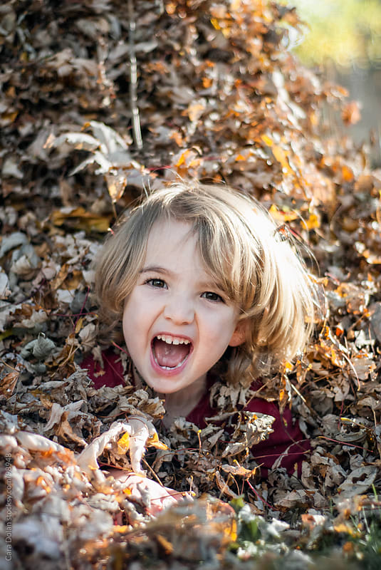 Young child laughs with joy while playing in a pile of fallen leaves in autumn by Cara Dolan for Stocksy United