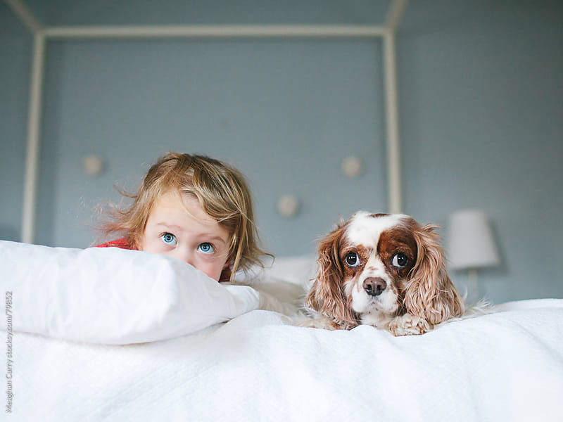 a child and her dog peeking out from the bed by Meaghan Curry for Stocksy United