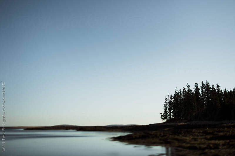Trees by water Landscape by Isaiah & Taylor Photography for Stocksy United