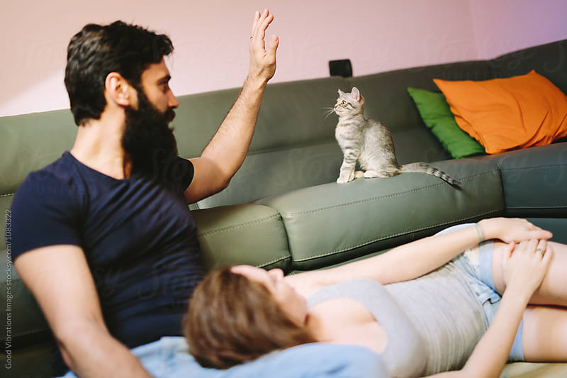 Beautiful Couple at home with a lovely kitten by Good Vibrations Images for Stocksy United