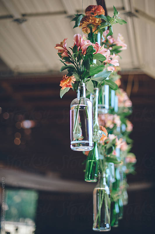 Pink Flowers Hanging in Glass Bottles as Decoration by Briana Morrison for Stocksy United