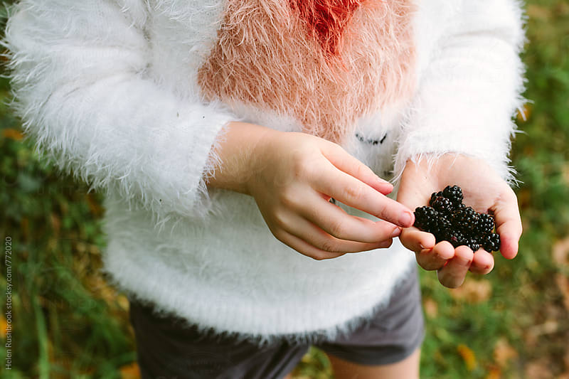 Child with a hand full of wild blackberries by Helen Rushbrook for Stocksy United
