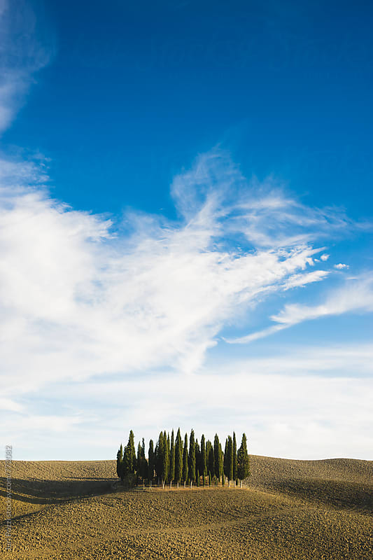 Tuscany landscape by Juri Pozzi for Stocksy United