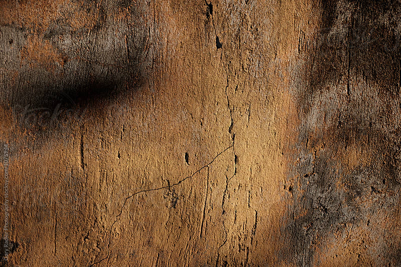 Close up of a Cracked Rendered Wall in Evening Light by Gary Radler Photography for Stocksy United