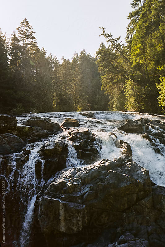 Englishman Falls Provincial Park, BC by Cameron Whitman for Stocksy United