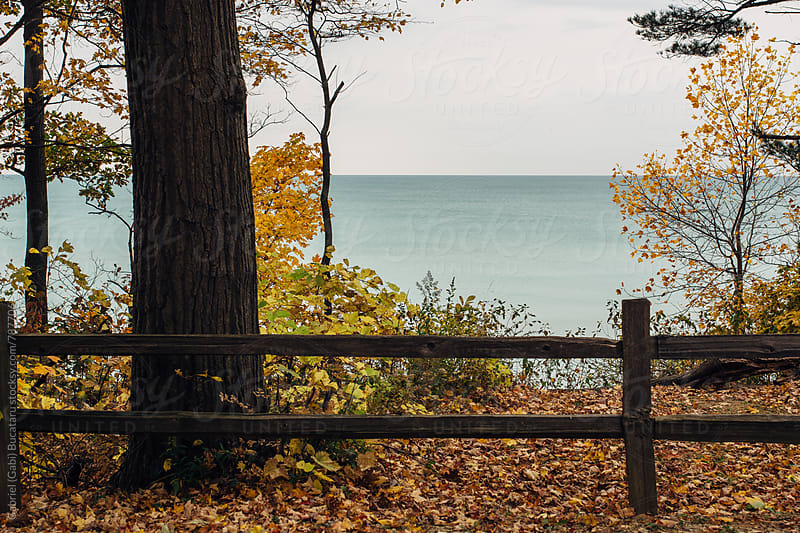 Scenic view of a lake in the fall by Gabriel (Gabi) Bucataru for Stocksy United