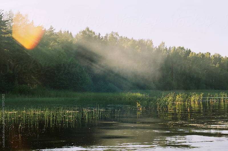 Lake in the morning by Lyuba Burakova for Stocksy United
