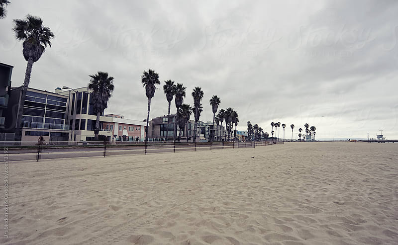 Venice Beach Los Angeles by Urs Siedentop & Co for Stocksy United