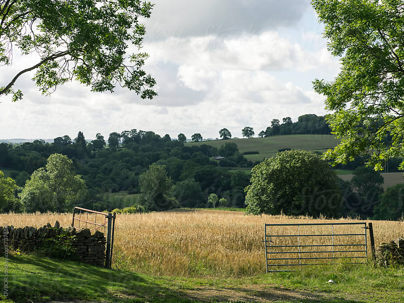 Typical beauty in the view of The Cotswolds region of the English Countryside in Summer by DV8OR for Stocksy United