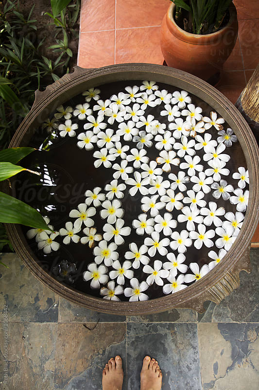 Frangipani flowers floating in a stone bowl by Ruth Black for Stocksy United