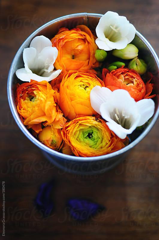 Spring jar by Eleonora Grasso for Stocksy United