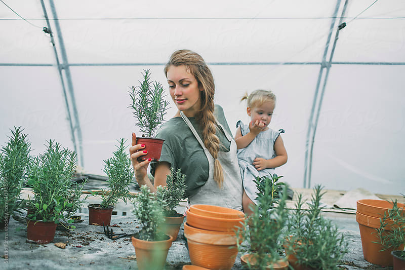 Day at the Greenhouse by Studio Firma for Stocksy United