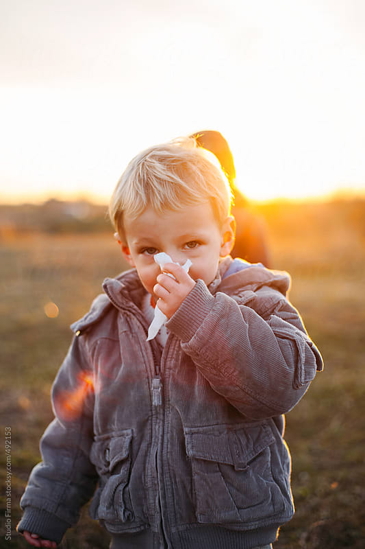 A boy blowing his nose with tissue. by Studio Firma for Stocksy United