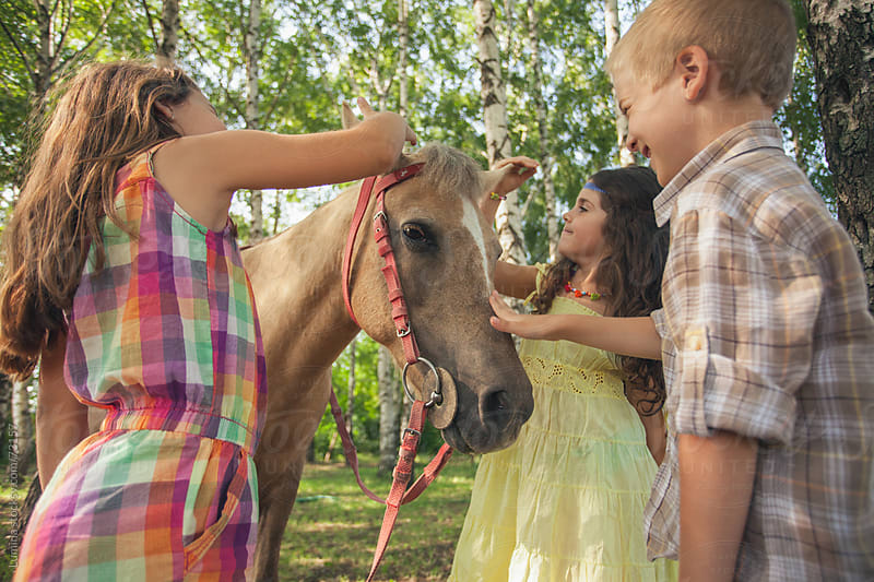 Kids Petting a Horse by Lumina for Stocksy United