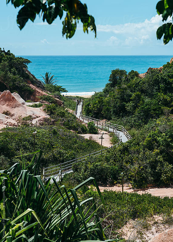 Beautiful view of a trail leading to a remote beach in Bahia, Brazil by Emmanuel Hidalgo for Stocksy United