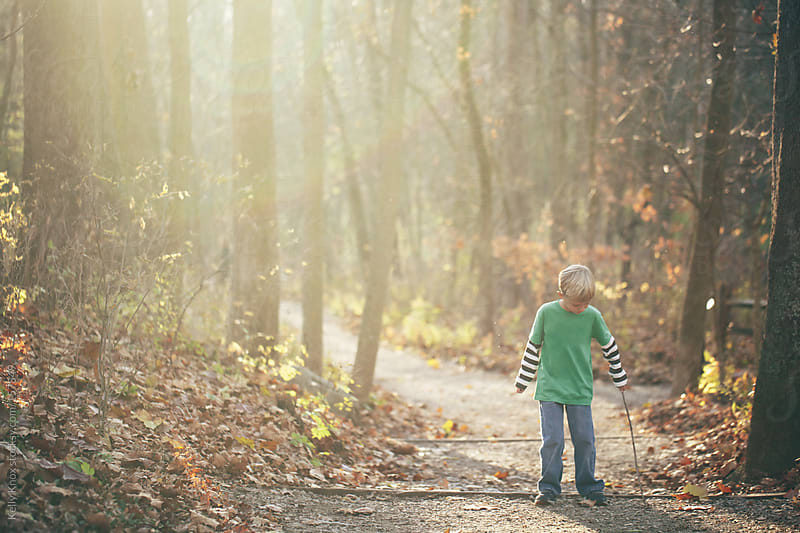 young boy taking a walk in the forest by Kelly Knox for Stocksy United