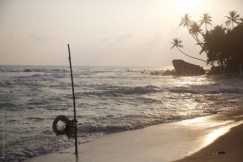 Sunset on a beach with palm trees and a fishing pole by Will Clarkson for Stocksy United