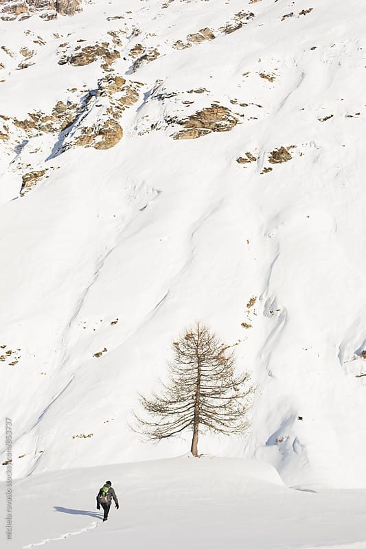 Man walking to the tree in the mountain by michela ravasio for Stocksy United