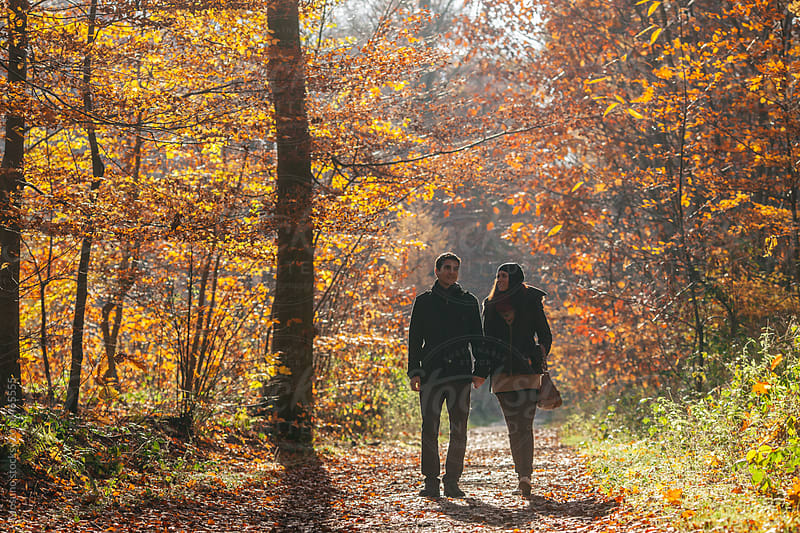 Couple Walking in a Sunny Autumn Forest  by Mosuno for Stocksy United