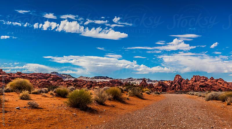 Path in the Nevada desert by alan shapiro for Stocksy United