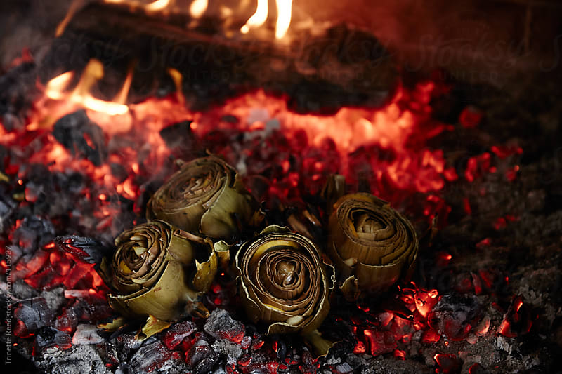 Roasted artichokes being cooked on the coals of an open fire by Trinette Reed for Stocksy United