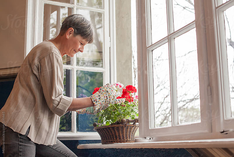 Senior Woman Planting Flowers at Home by Mosuno for Stocksy United