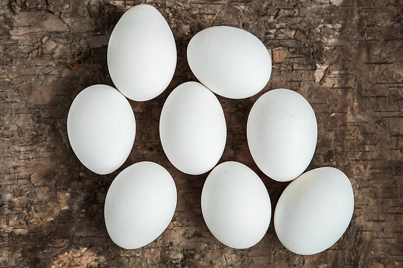 White shell eggs  by Zocky for Stocksy United