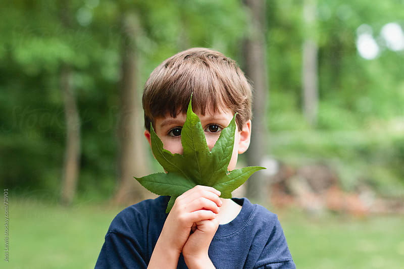 boy holding large leaf over face by Jess Lewis for Stocksy United