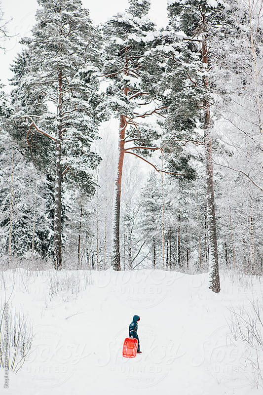 Boy Walking Up Snowy Hill With Sled by Stephen Morris for Stocksy United