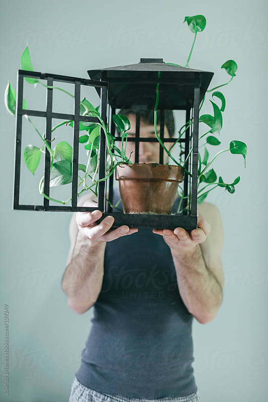 Man Holding Open Lamp Cage with Potted Plant Inside by Joselito Briones for Stocksy United