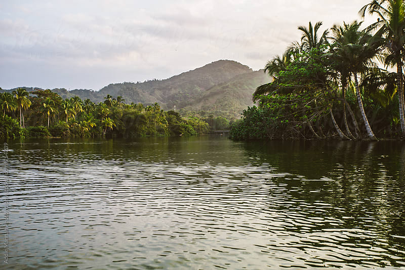 Calm Lagoon by Addie Mannan Photography for Stocksy United