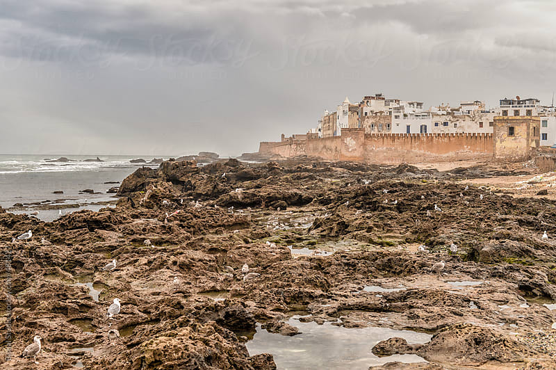 Essaouira from the rocks by Bisual Studio for Stocksy United