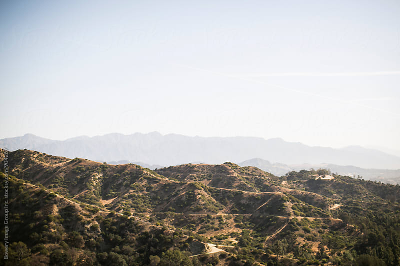 Griffith Park view by Ann-Sophie Fjelloe-Jensen for Stocksy United