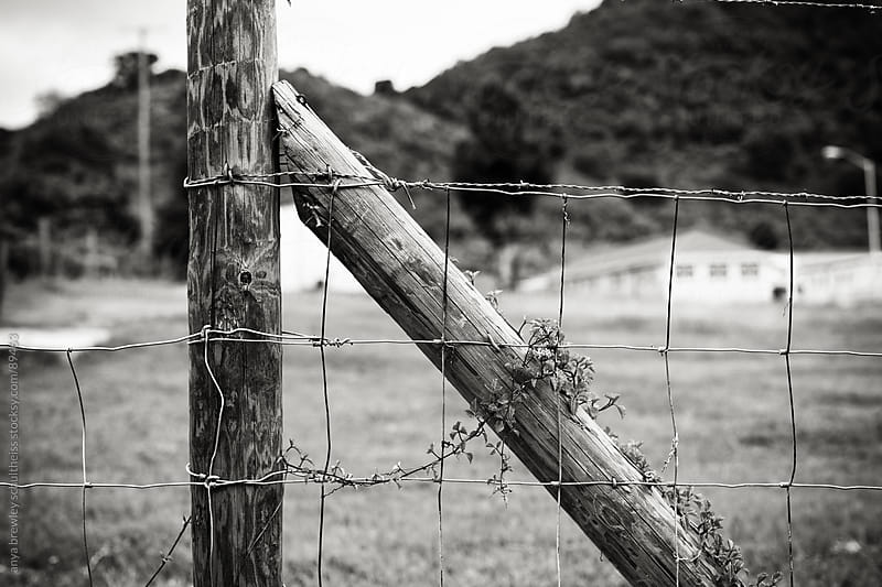 Image of old fence and gate in black and white by anya brewley schultheiss for Stocksy United