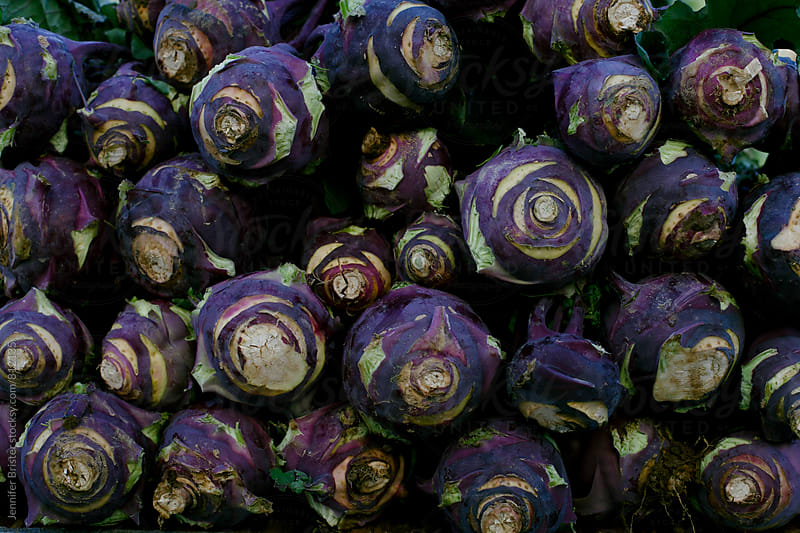 Rows of purple cabbage by Jen Brister for Stocksy United