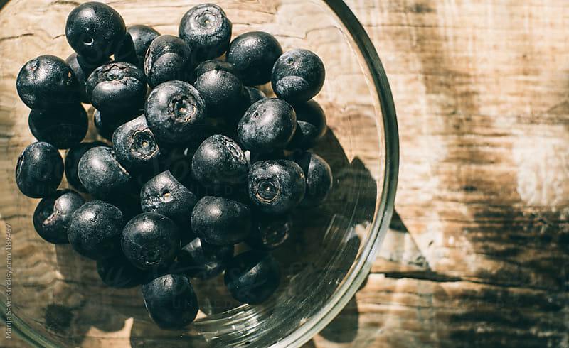Bowl of Blueberries  by Marija Savic for Stocksy United