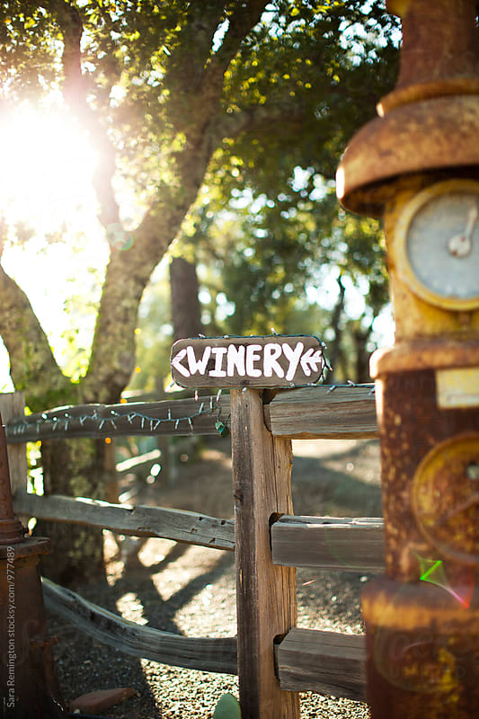 Winery Sign by Sara Remington for Stocksy United