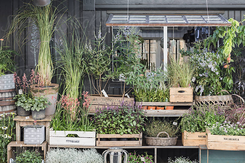 Plants and flowers in boxes and crates outside a shop by Lior + Lone for Stocksy United
