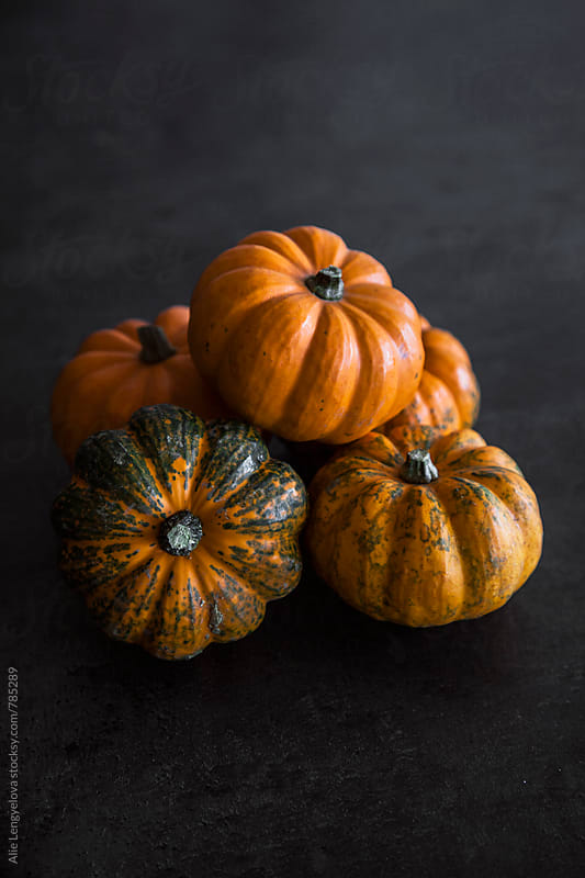 Pumpkin by Alie Lengyelova for Stocksy United