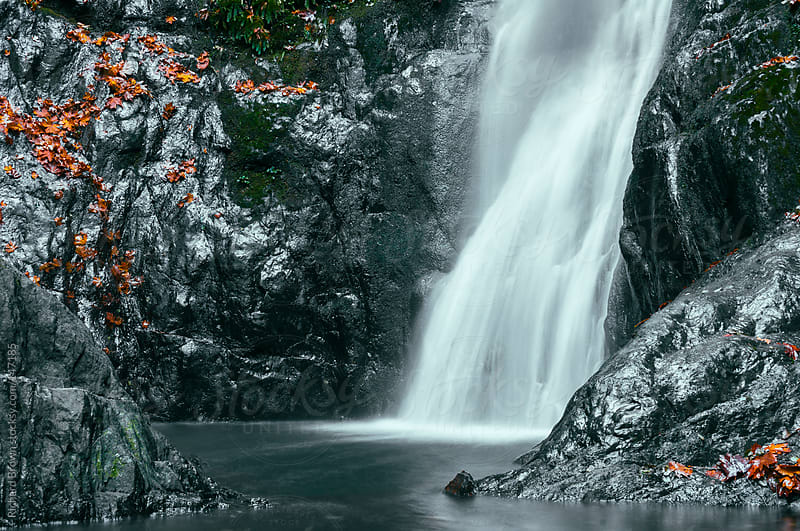 A waterfall and a mossy pool by Richard Brown for Stocksy United