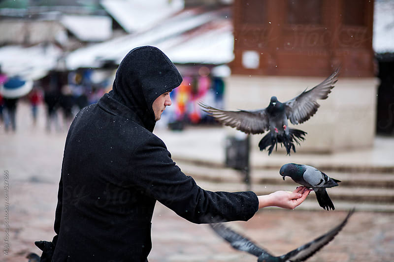 Man feeding the pigeons on the streets by Maja Topcagic for Stocksy United