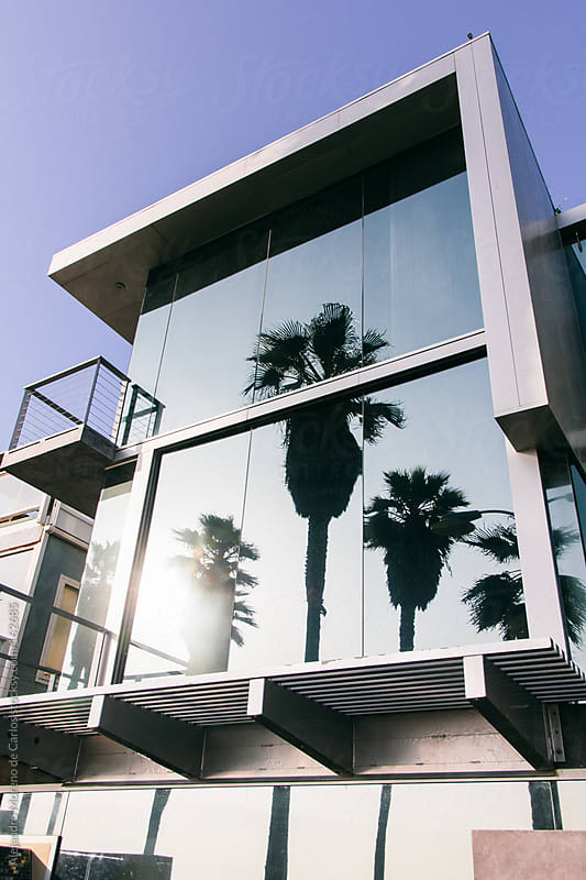 Modern building with palm trees reflection in Los Angeles by Alejandro Moreno de Carlos for Stocksy United