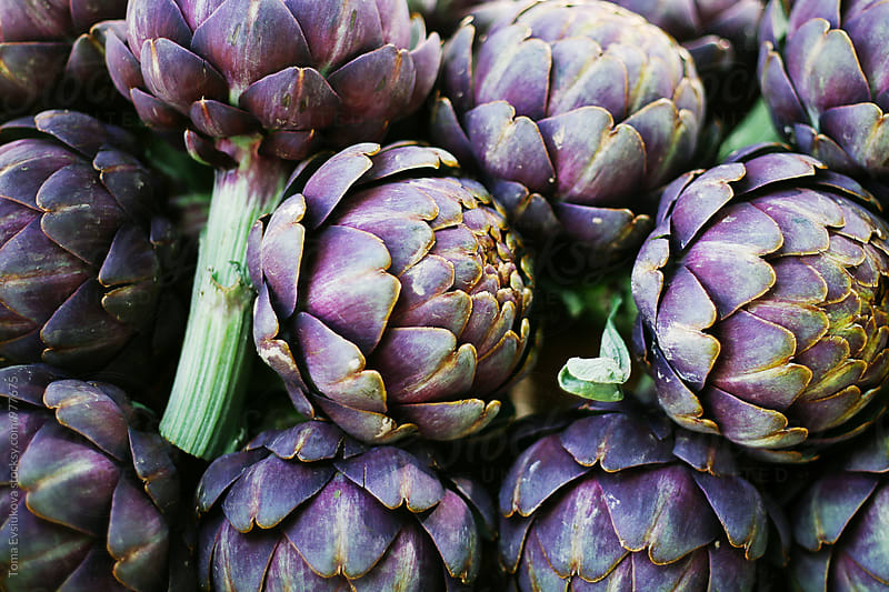 Artichokes for sale by Toma Evsiukova for Stocksy United