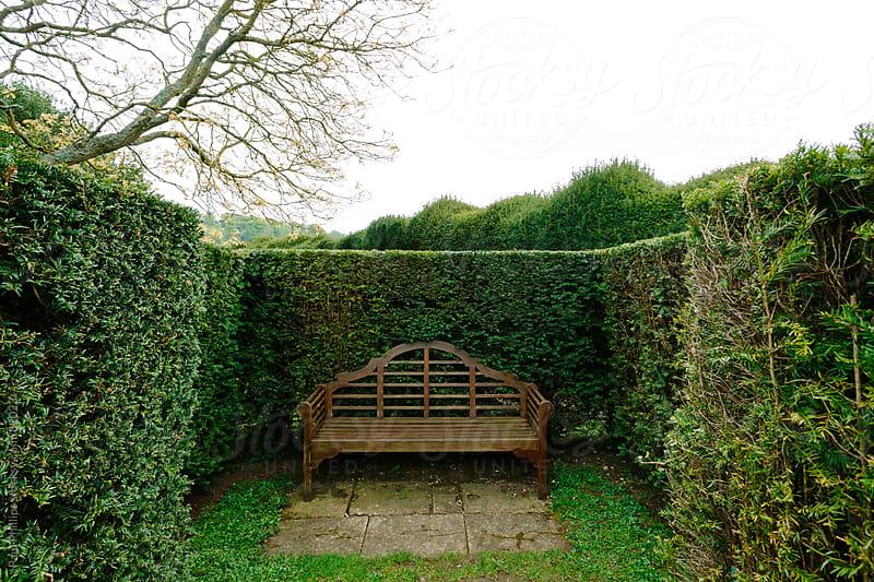Hidden park bench by Paul Phillips for Stocksy United