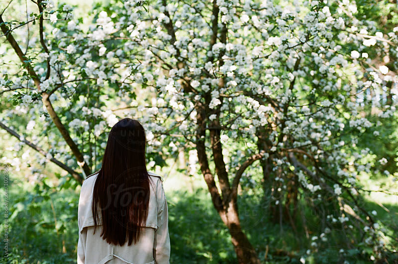 Back view of a woman looking at tree in blossom by Lyuba Burakova for Stocksy United