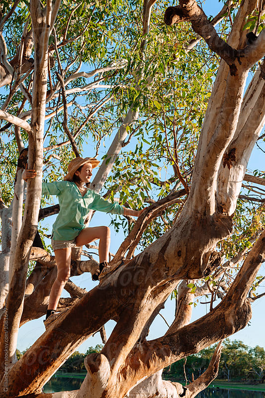 teen girl climbing a tree during a camping holiday by Gillian Vann for Stocksy United