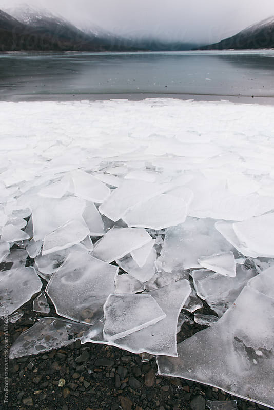cracked ice plates at the edge of a lake in winter by Tara Romasanta for Stocksy United