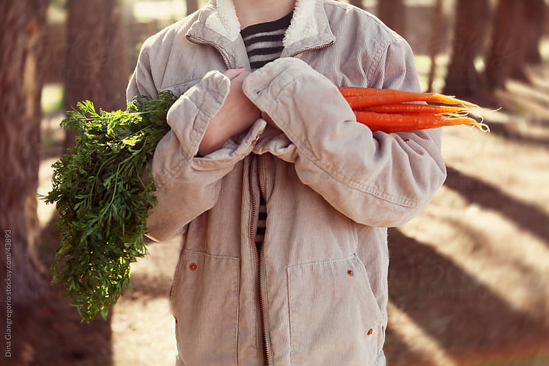 Child in oversized jacket holding fresh carrots with stems  - mid section showing only  by Dina Giangregorio for Stocksy United