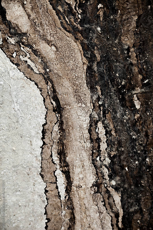 Tar Residue on Concrete Abstract by Eldad Carin for Stocksy United